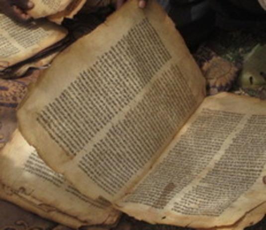 Neues Testament II: Prof. Dr. Loren Stuckenbruck